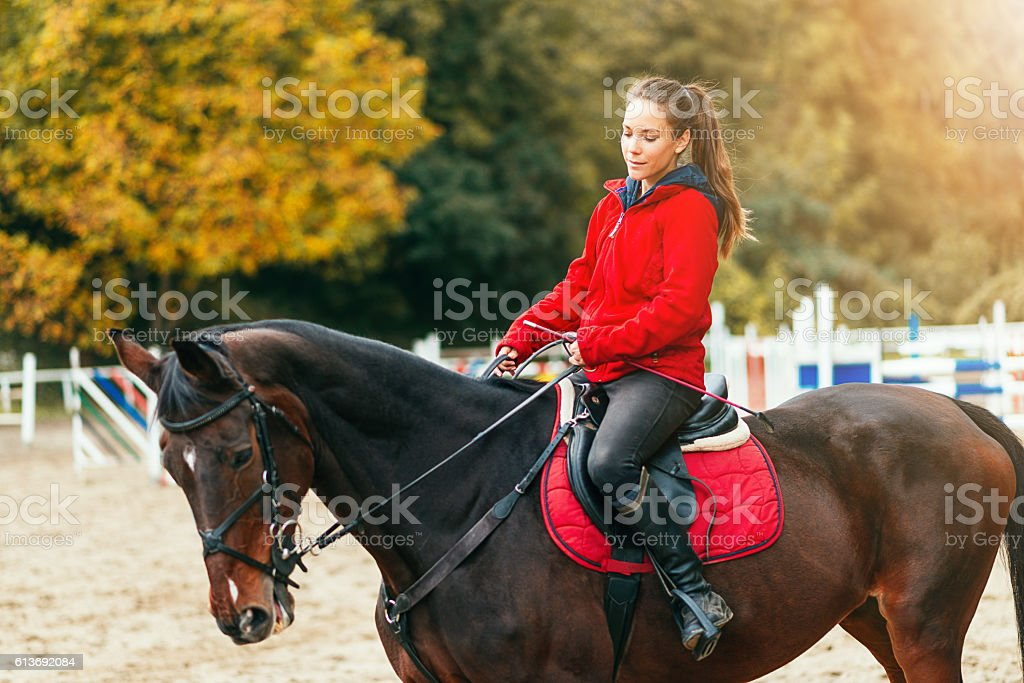 Beautiful horse and young female jockey stock photo