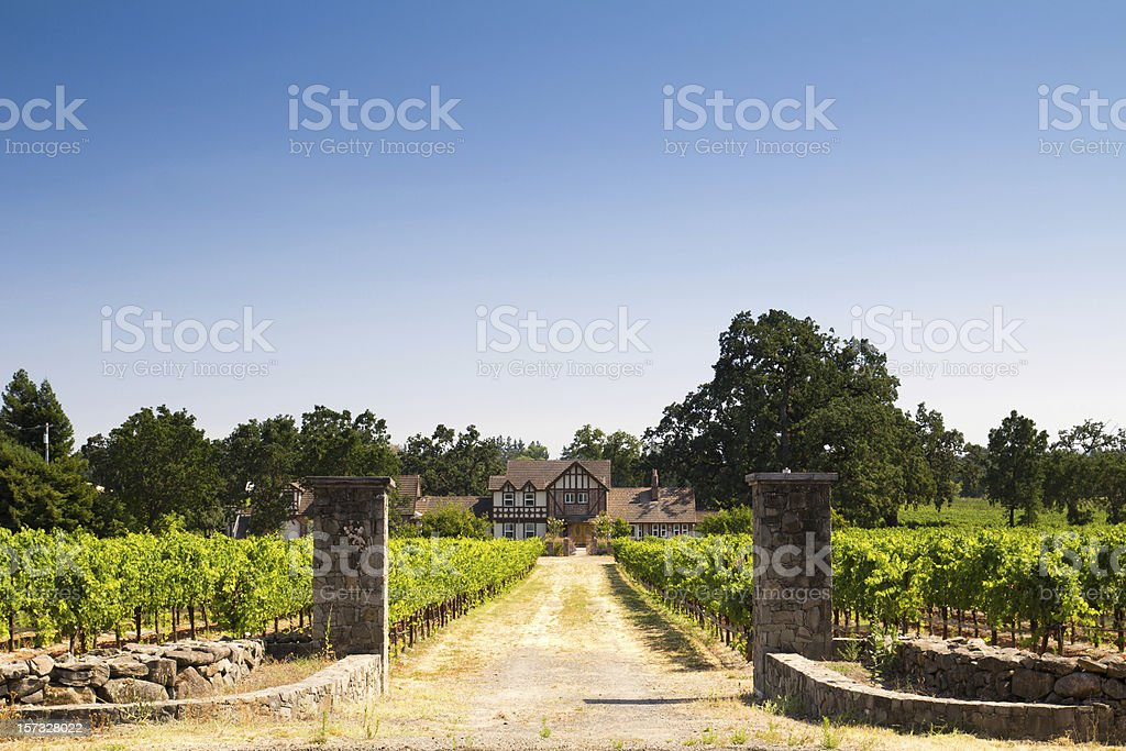 Beautiful house in a vineyard royalty-free stock photo