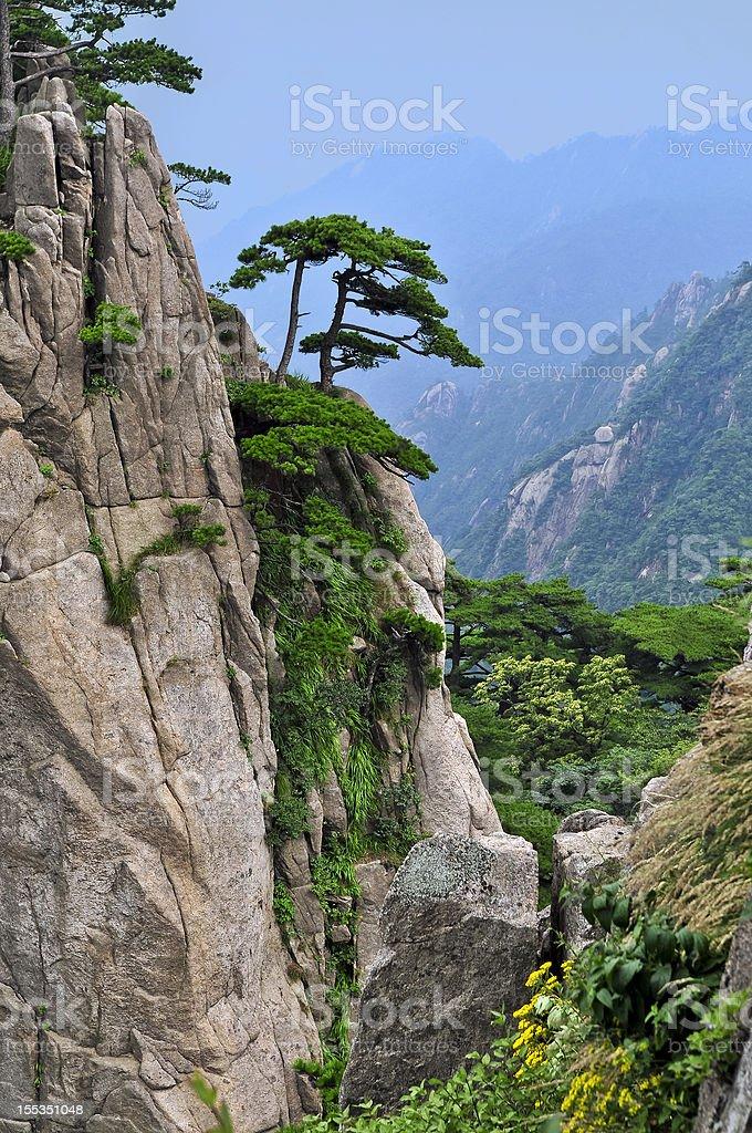 Beautiful Huangshan Mountains China stock photo