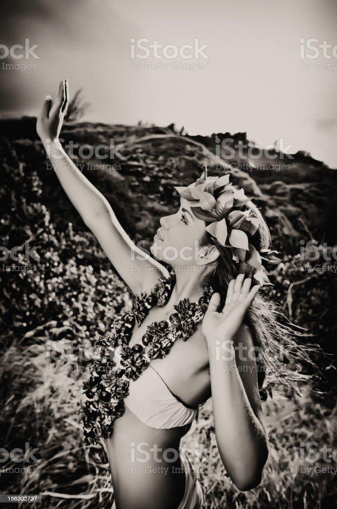 Beautiful Hula Dancer stock photo