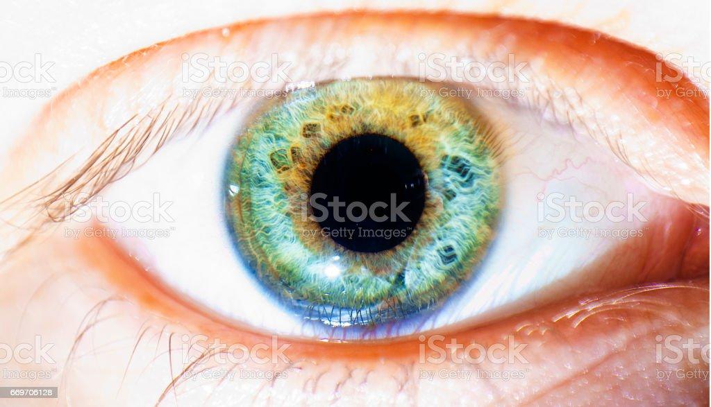beautiful human eye, macro, close up  blue, green, yellow stock photo