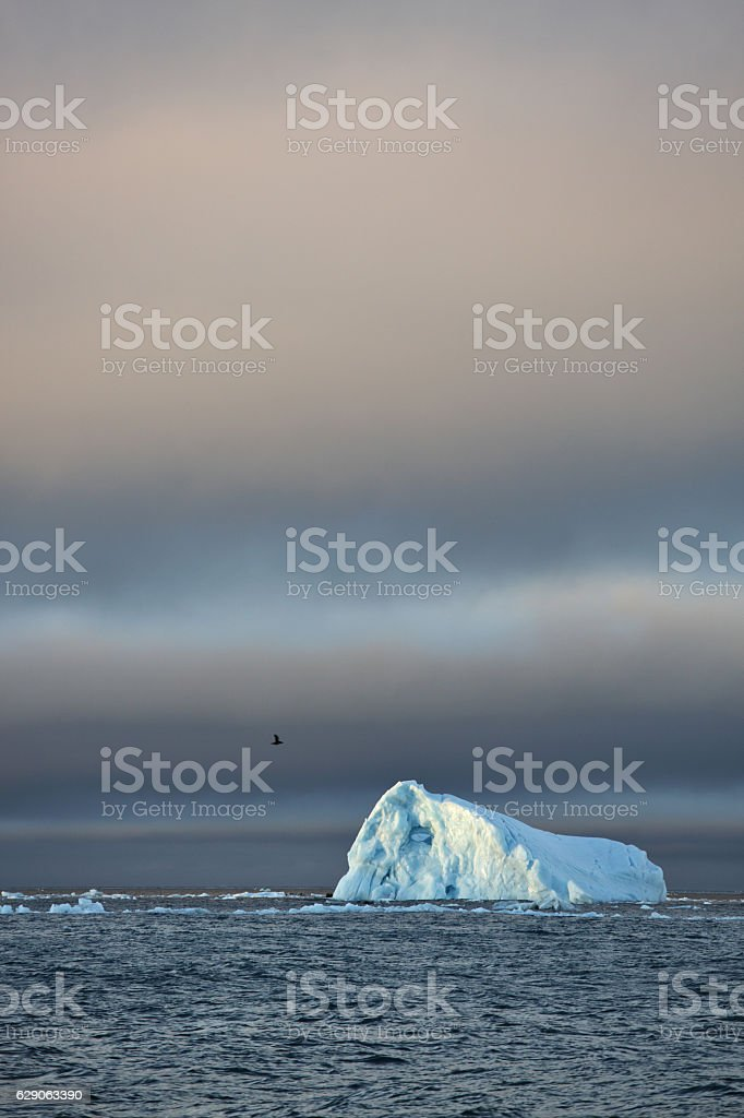 Beautiful iceberg stock photo
