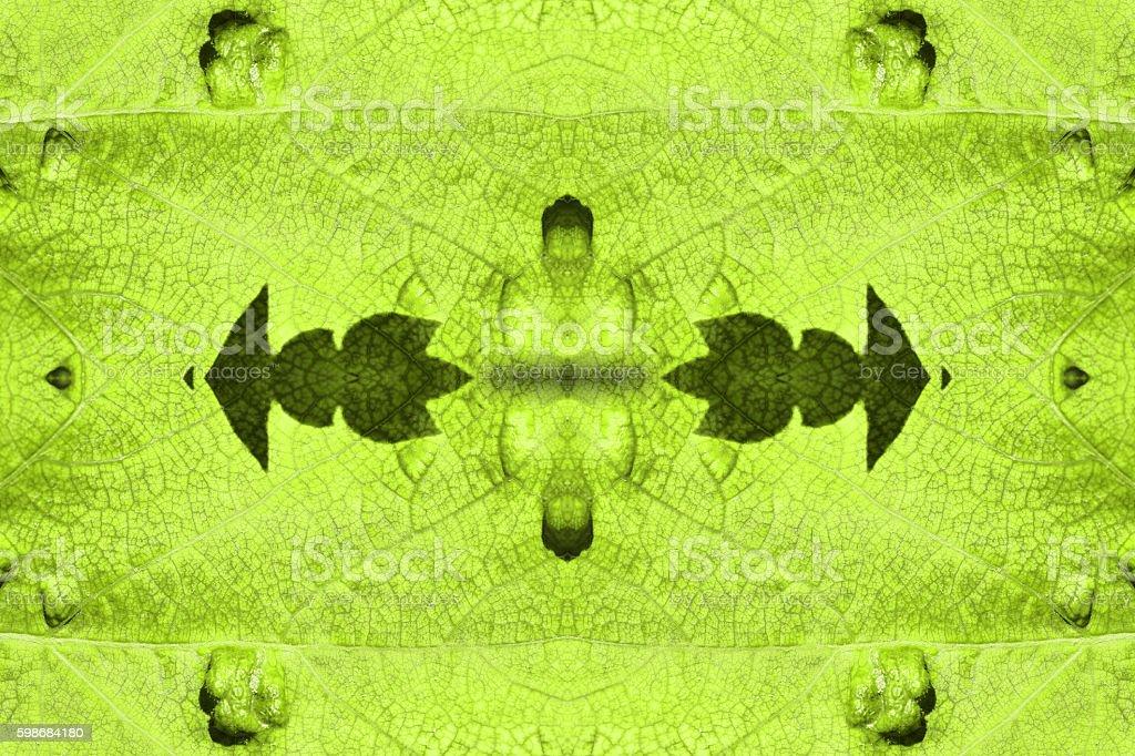 Beautiful imperfect sick vine leaf texture surreal shaped symmetrical kaleidoscope stock photo