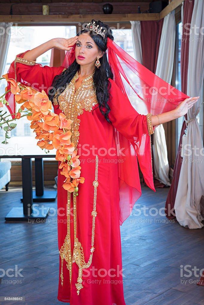 Beautiful Indian girl in traditional Indian sari. stock photo