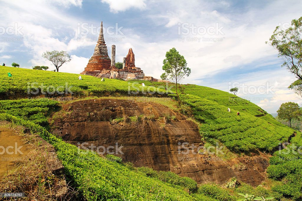 beautiful indian landscape stock photo