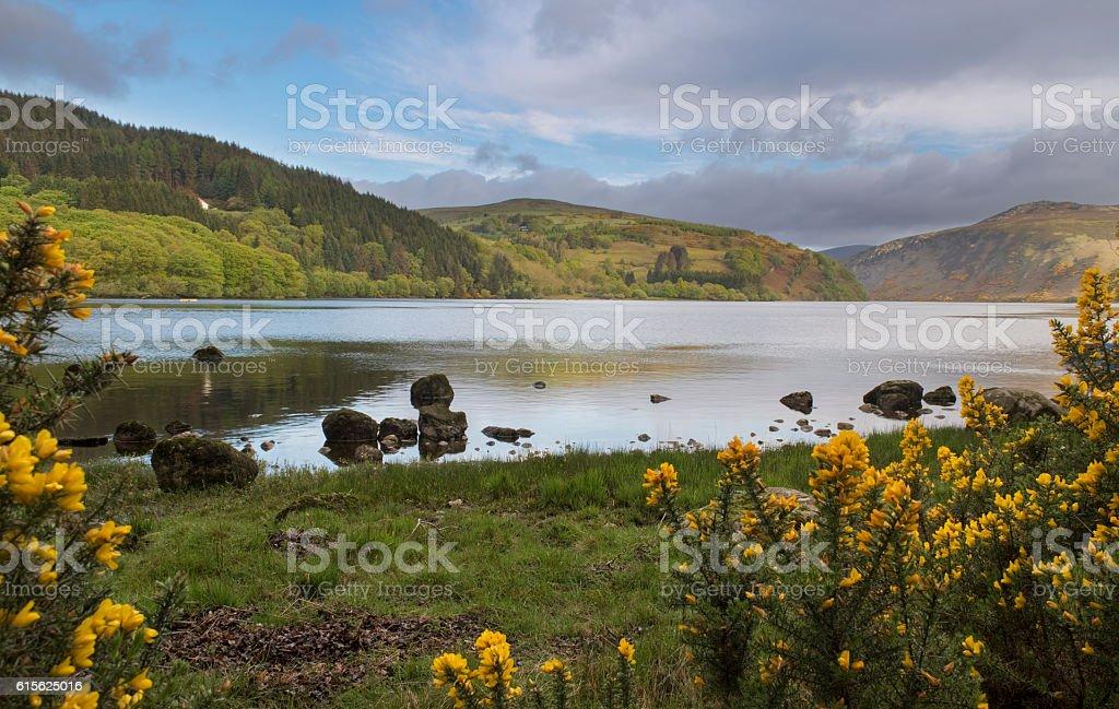 Beautiful Irish landscape of the Lough Dan lake stock photo