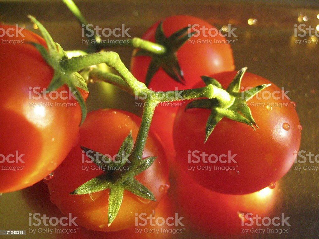 Beautiful 'Isis Candy' Tomatoes royalty-free stock photo