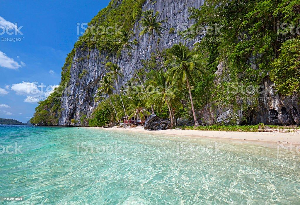 Beautiful island. Blue bay and palm trees. stock photo