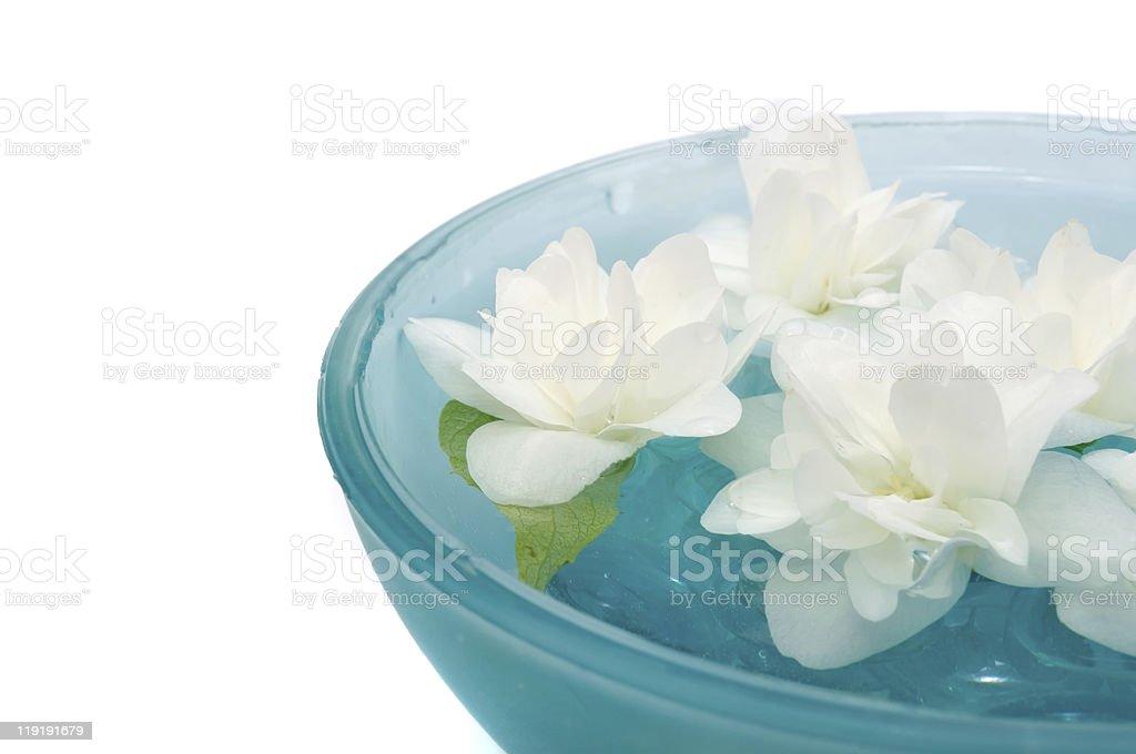 Beautiful Jasmine Flowers in Bowl stock photo