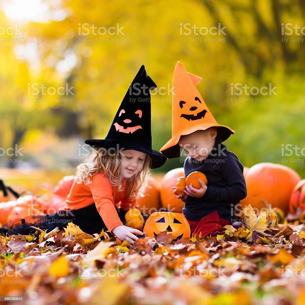 Beautiful kids with pumpkins on Halloween stock photo