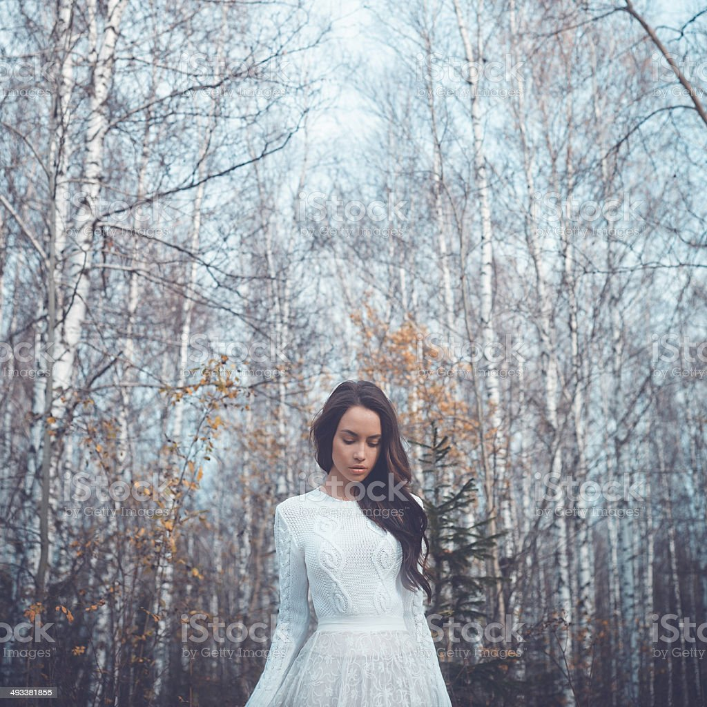 Beautiful lady in a birch forest stock photo