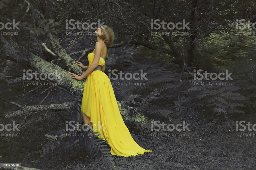 Beautiful lady in fairy forest royalty-free stock photo