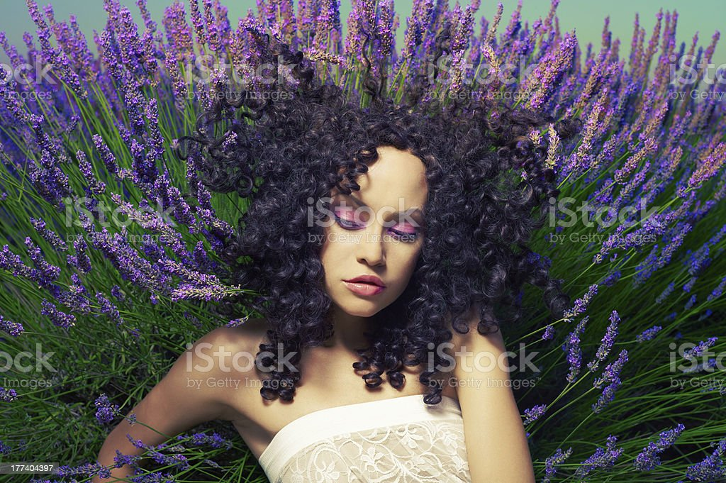 Beautiful lady in lavender royalty-free stock photo