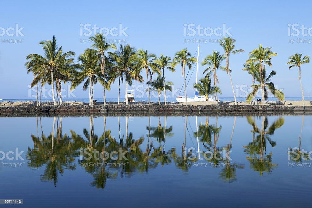 Beautiful laguna with palm trees, blue sky stock photo