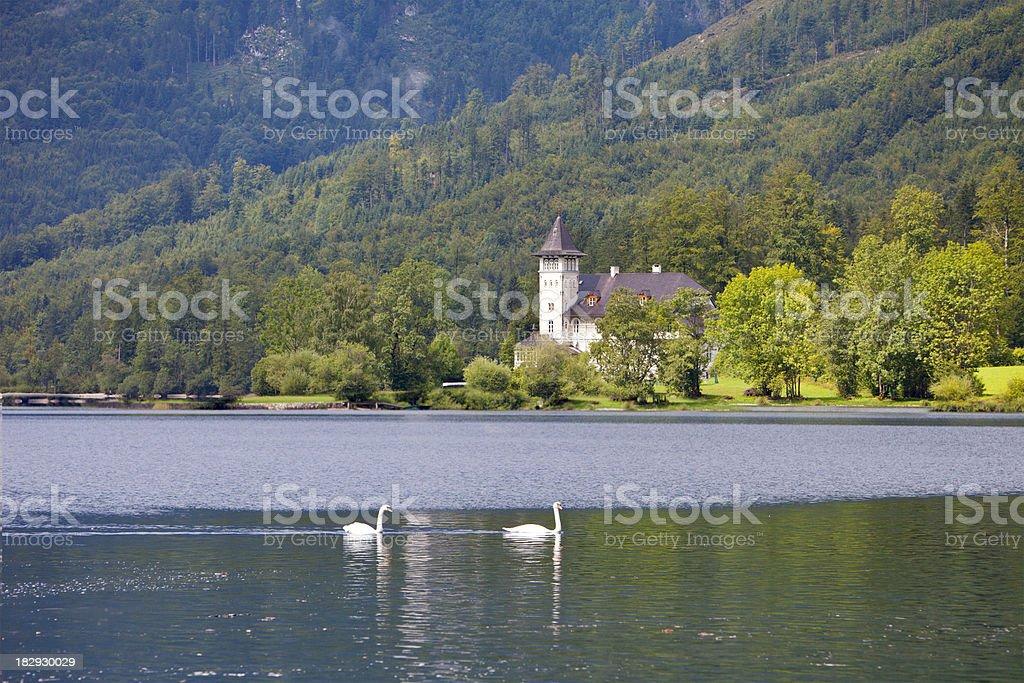 Beautiful lake by Gösse, Austria. Church and swans, stock photo