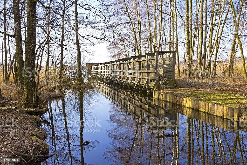 Beautiful lake in springtime stock photo