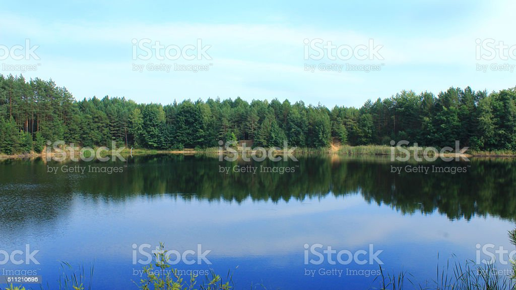 beautiful lake in the forest stock photo