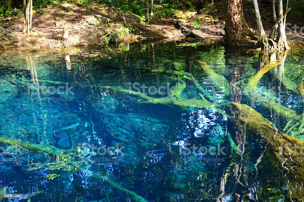 beautiful lake in the tropical jungle stock photo