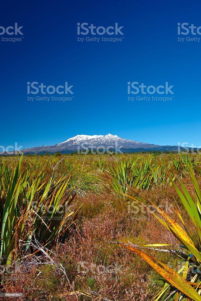 Beautiful landscape and volcano stock photo