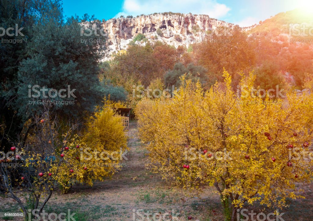 Beautiful Landscape from the Mountains in the countryside stock photo