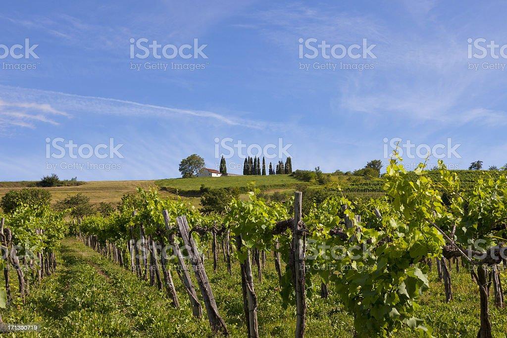 Beautiful landscape in Slovenia stock photo