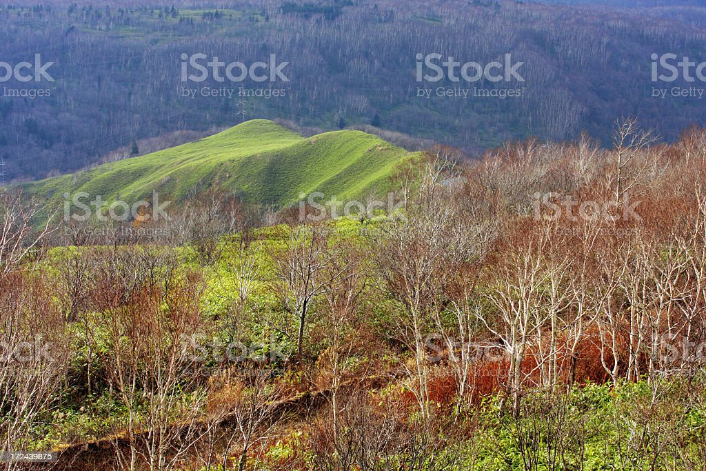 Beautiful landscape in the mountains royalty-free stock photo