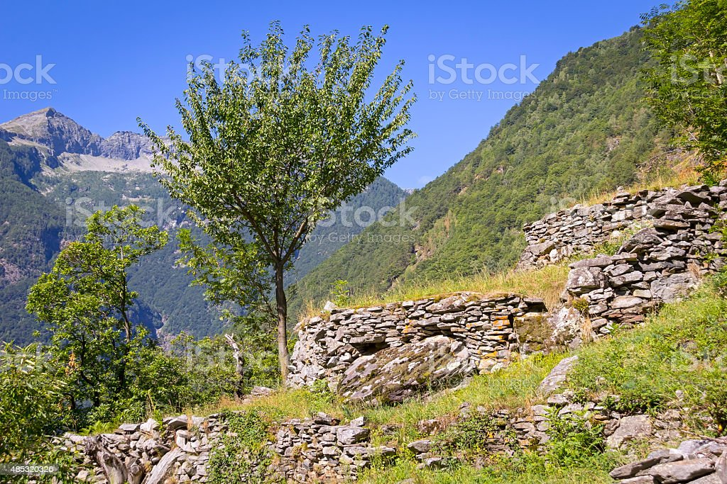 Beautiful Landscape in the Valle Maggia stock photo