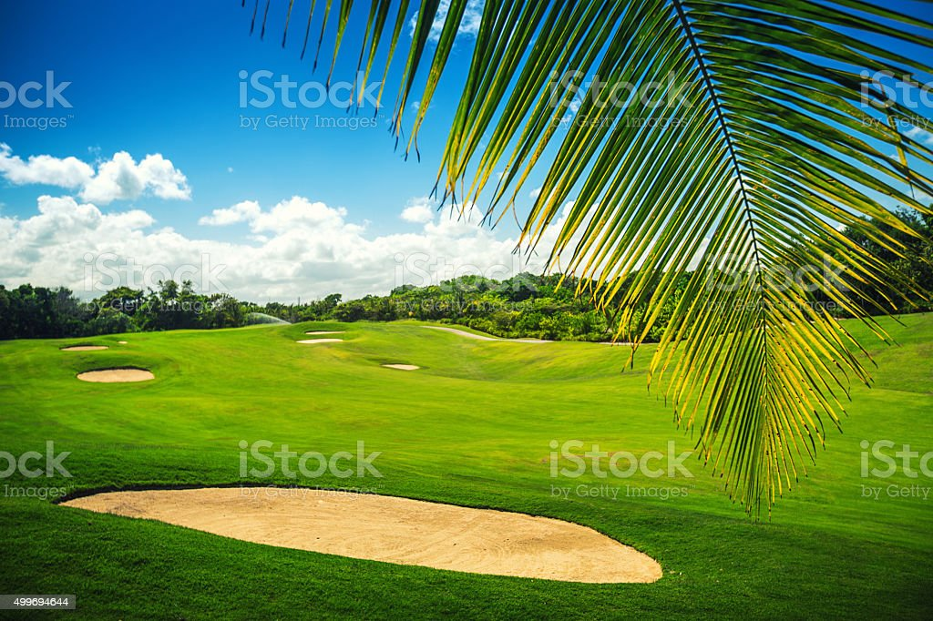 Beautiful landscape of a golf court with palms, Punta Cana stock photo