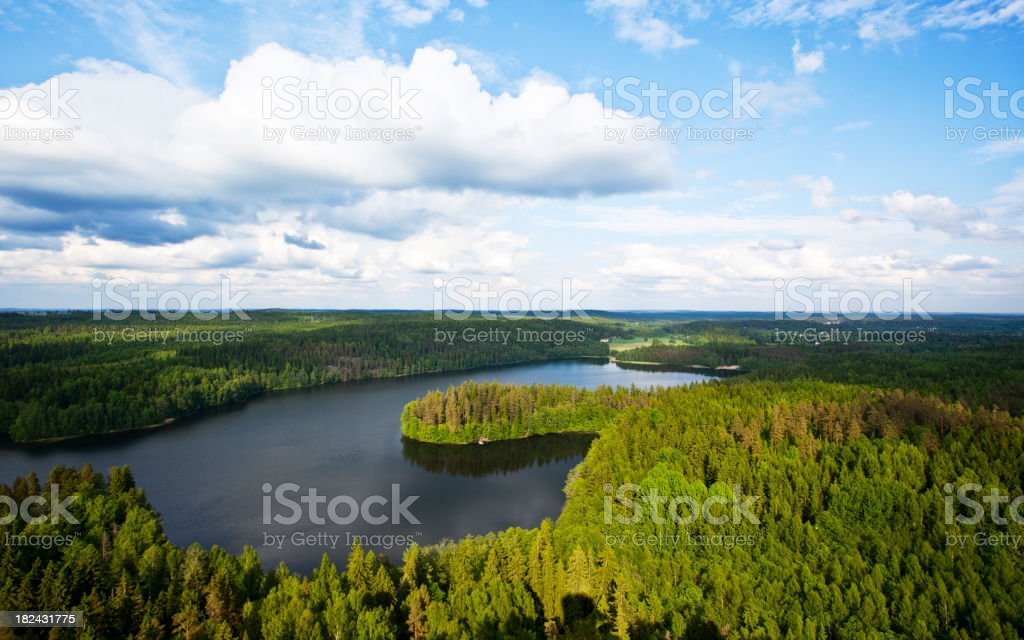 A beautiful landscape of a large forest and a shimmery lake stock photo