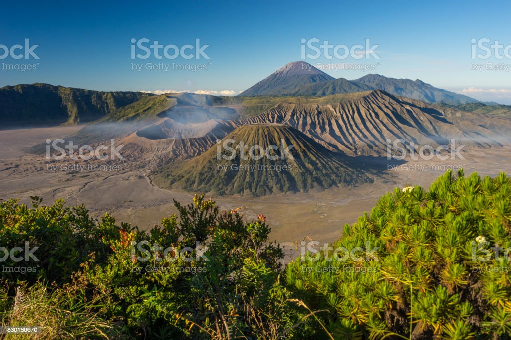Beautiful landscape of Bromo volcano mountain in East Java, Indonesia stock photo