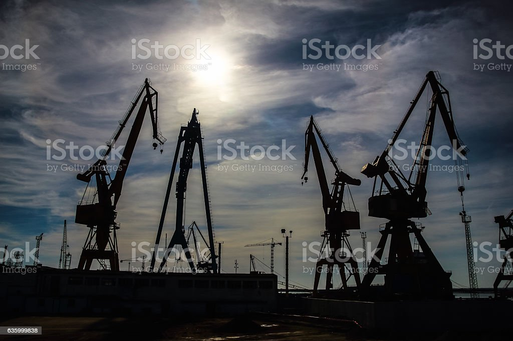 Beautiful landscape of  cranes stock photo
