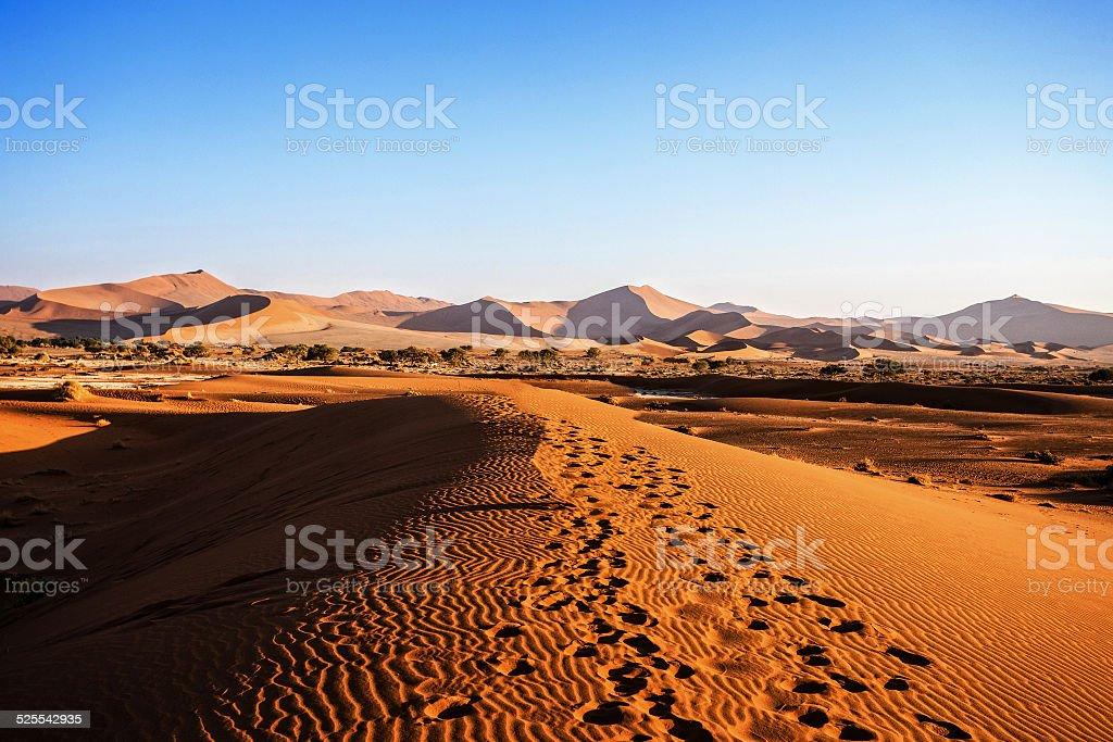 beautiful landscape of Hidden Vlei in Namib desert stock photo