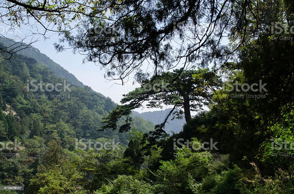 Beautiful landscape of mountain Taishan in China stock photo