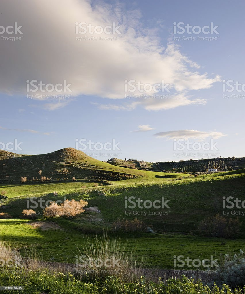 beautiful landscape of rolling grass royalty-free stock photo