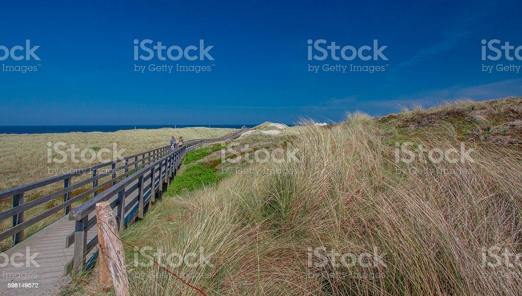 Beautiful landscape on Sylt island at North Sea!! stock photo