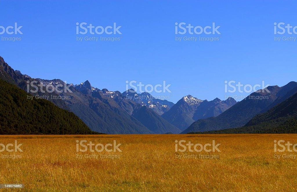 beautiful landscape(fiordland national park, New Zealand ) royalty-free stock photo
