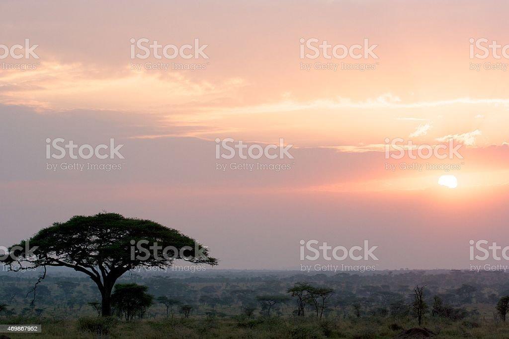 Beautiful Landscape, Serengeti, Tanzania stock photo