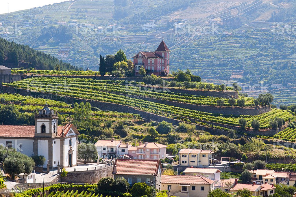 Beautiful landscape view of Douro valley stock photo