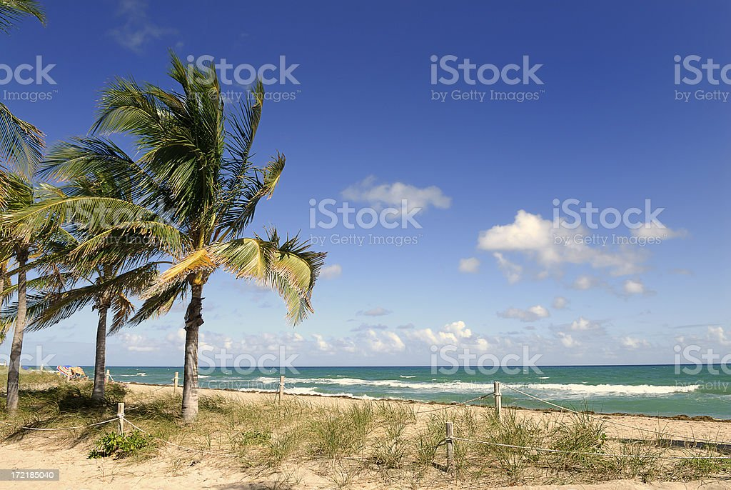 Beautiful landscape view of Fort Lauderdale Beach royalty-free stock photo