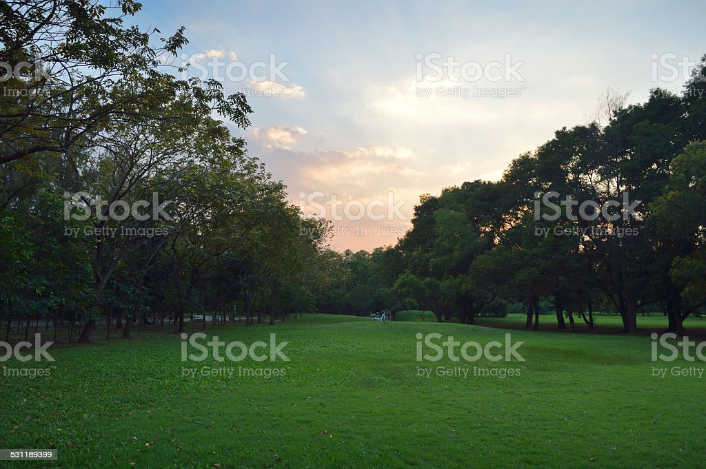 beautiful landscape with bicycle at park stock photo