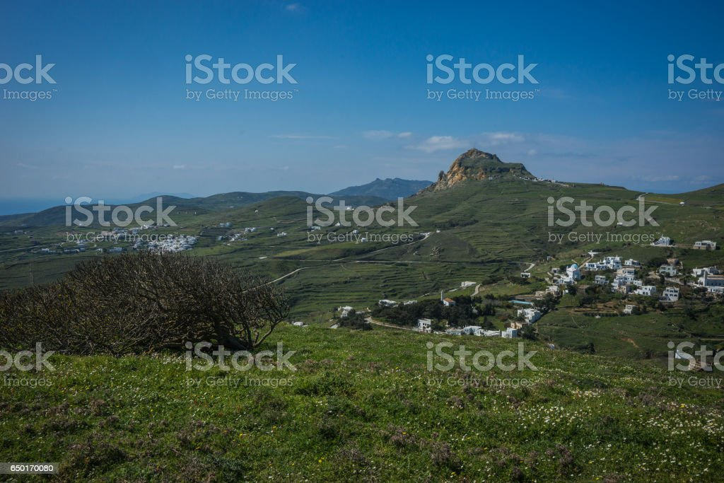 Beautiful landscape with fields, mountains and flowers stock photo
