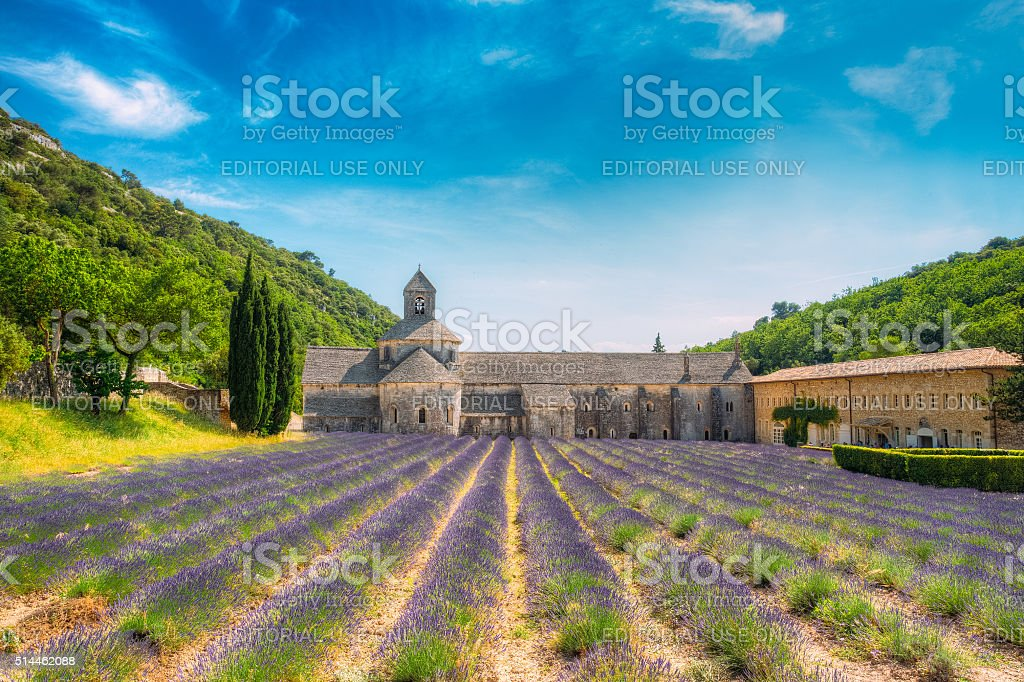 Beautiful lavender field and an ancient monastery abbey Abbaye N stock photo