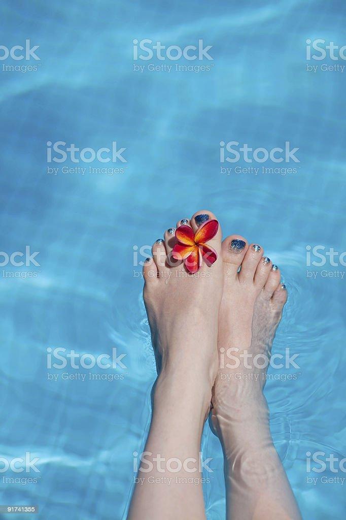 beautiful legs in the swiming pool royalty-free stock photo