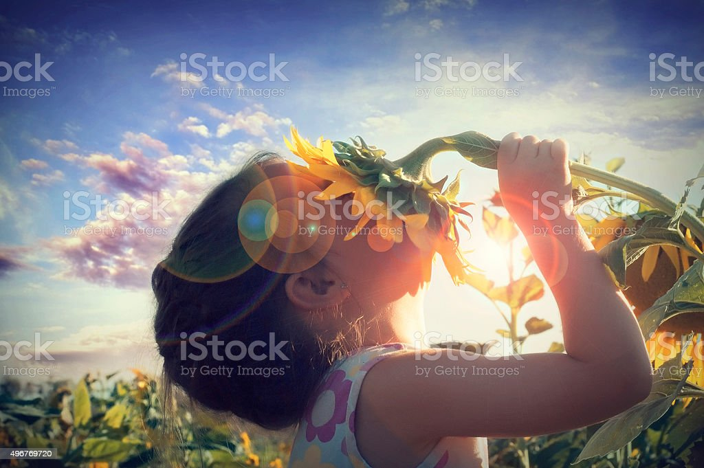 Beautiful little girl and sunflower stock photo