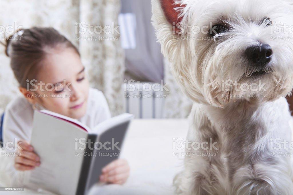 Beautiful little girl reading stock photo