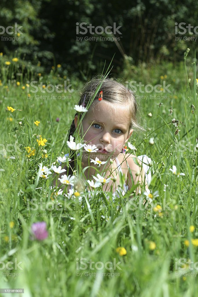 Beautiful little girl with flowers stock photo