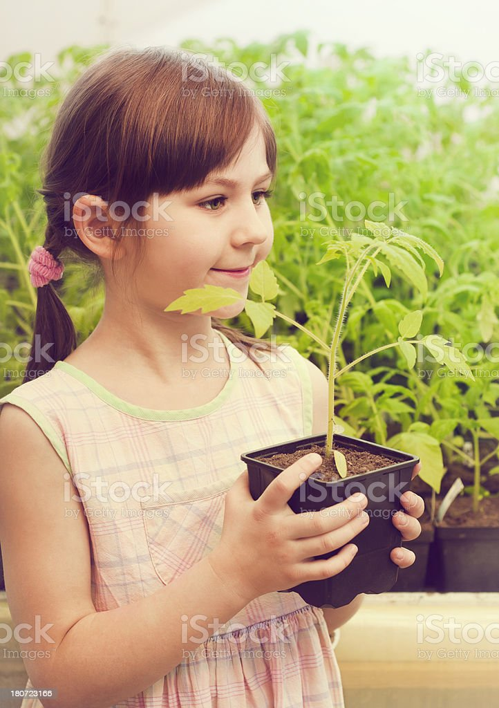 Beautiful little girl with plant royalty-free stock photo