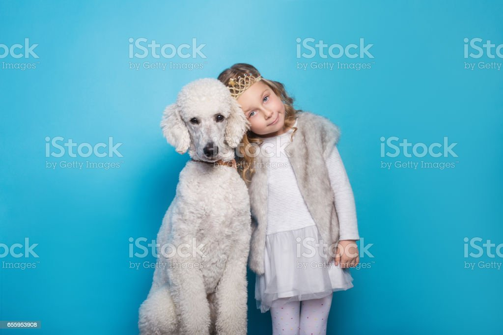 Beautiful little princess with dog. Friendship. Pets. Studio portrait over blue background stock photo