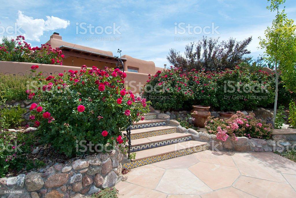 Beautiful Lush Back Yard Rose Garden stock photo