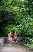 Beautiful maiko girls outdoors
